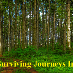 Tips For Surviving Journeys in the Wild