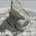 10 First Aid Uses for Bentonite Clay