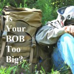 Is Your BOB Too Big?