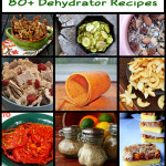 Dehydrator Recipes To Preserve the Harvest (80+)