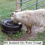 DIY Insulated Tire Water Trough