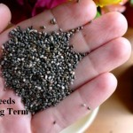 3 Super Seeds For Long Term Storage
