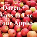 2 Dozen + Ways to Use Your Apples