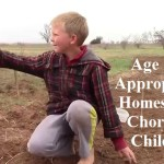 Age Appropriate Homestead Chores for Children
