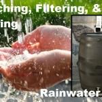 Catching, Filtering, & Storing Rainwater