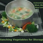 Blanching Vegetables for Storage