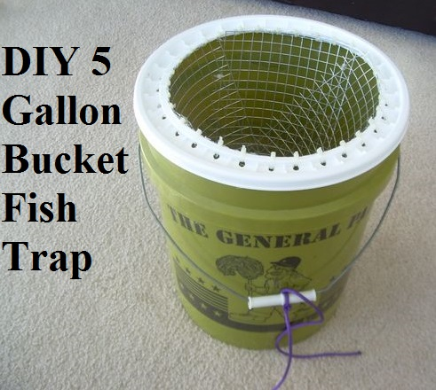 Diy 5 gallon bucket fish trap the prepared page for Homemade fish trap