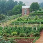 Gardening Planting Using Jeffersonian Principles