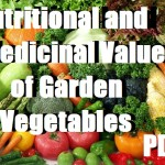 Nutritional And Medicinal Value Of Garden Vegetables