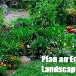 Plan an Edible Landscape