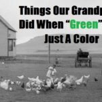 "Things Our Grandparents Did When ""Green"" Was Just A Color"