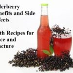 Elderberry Benefits & Side Effects With Juice & Tincture Recipes