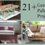 21+ Genius  Pallet Projects