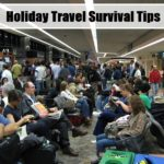 Holiday Travel Survival Tips