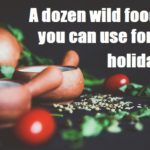 A dozen wild foods you can use for the holidays