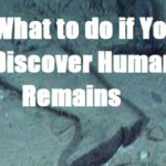 What to do if You Discover Human Remains