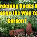 Gardening Hacks Will Change the Way You Garden!