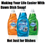 Making Your Life Easier With Dawn Dish Soap! Not Just For Dishes