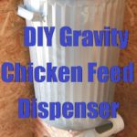 DIY  Gravity Chicken Feed Dispenser