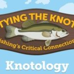 Knotology