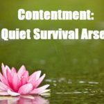 Contentment: The Quiet Survival Arsenal