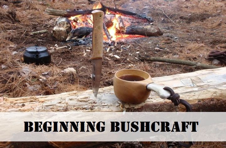 Beginning Bushcraft