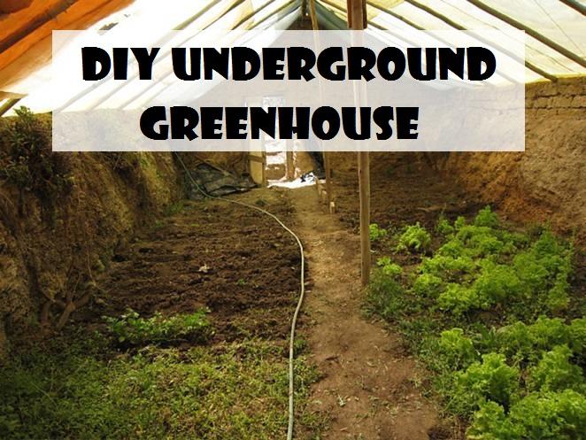 DIY Underground Greenhouse