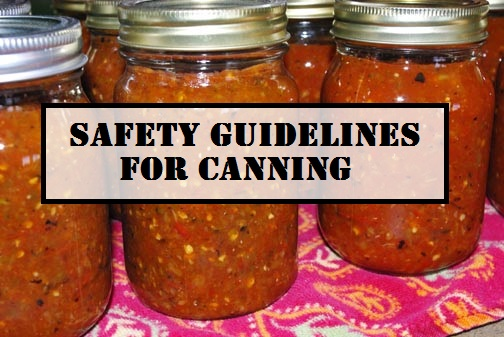 Safety Guidelines for Canning