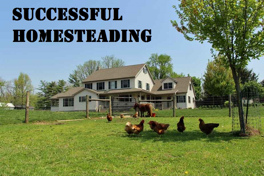 Successful Homesteading