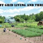 Off Grid Living and Thriving!