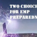 Two Choices for EMP Preparedness