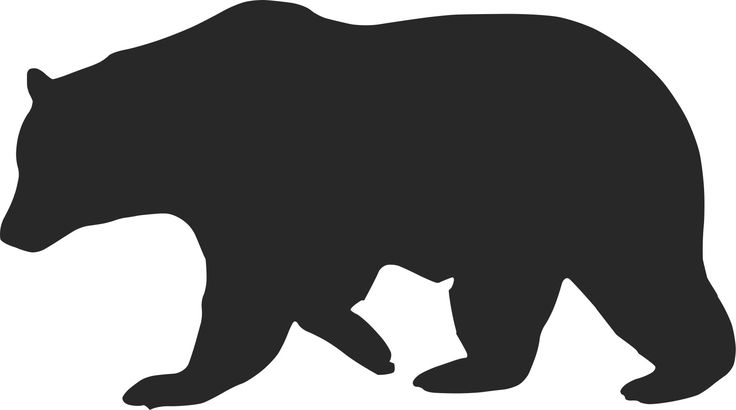 Hunting, processing, and cooking black bear