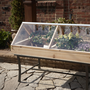 DIY Table Top Greenhouse - The Prepared Page