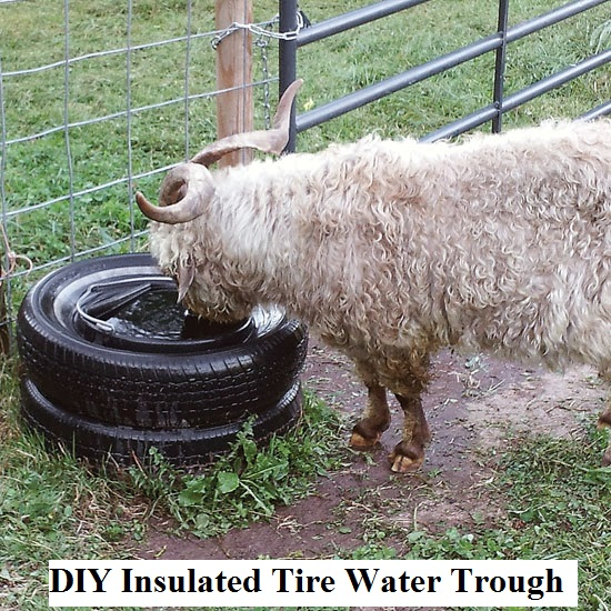 Diy Insulated Tire Water Trough The Prepared Page