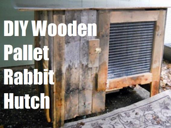 Diy Wooden Pallet Rabbit Hutch The Prepared Page